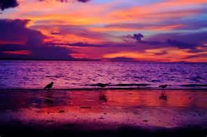 balinese women tumbler picture 10