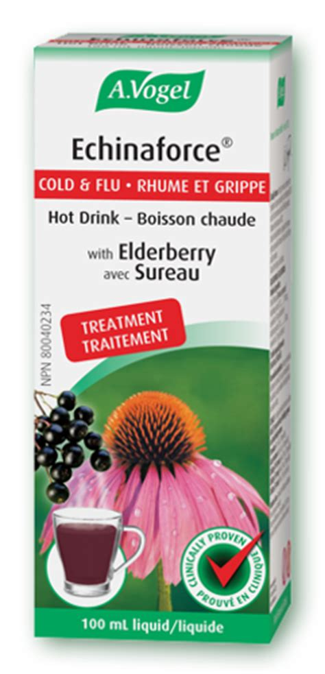 can pregnant women take echinacea picture 19