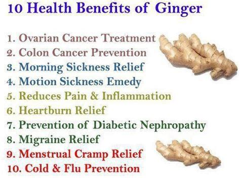 ginger health benefits/libido picture 5