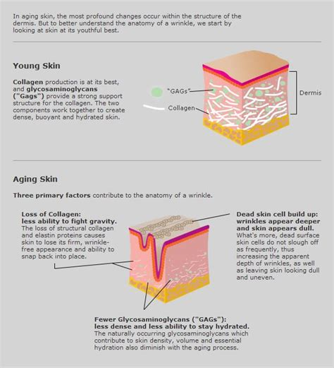 the science behind determining skin color in an picture 3