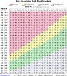 bmi calculator and weight loss picture 6