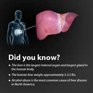 interesting facts about cirrhosis of the liver picture 1