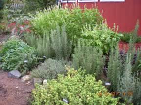 herbal garden picture 3