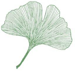 ginkgo gifts picture 14