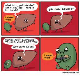 how to know if ur gall bladder is picture 9
