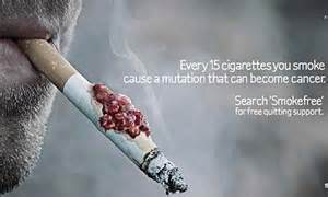 2014 how many americans smoke picture 11