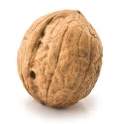 daily omega 3 walnuts picture 2