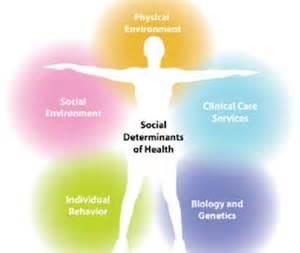 havard sl of public health picture 11
