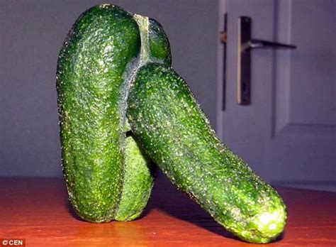 cucumber shaped penis picture 1
