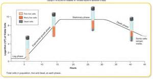 microbial growth curve picture 2