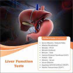 what are liver function tests picture 19