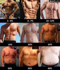 male to female developing feminine body fat picture 13