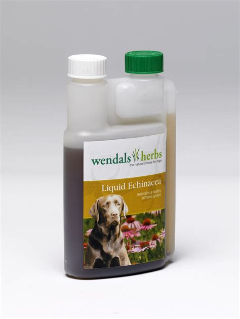 echinacea dose for canine picture 1
