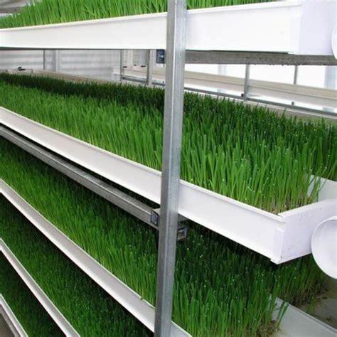 alfalfa prices picture 11