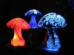 glow, fungus solutions picture 2