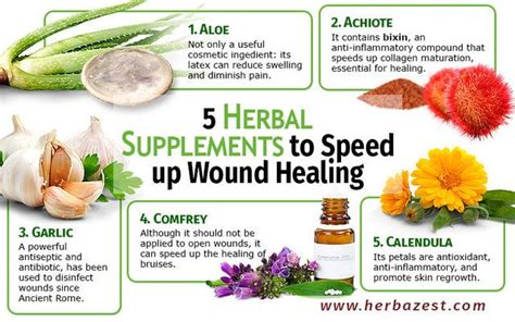 herbs and vitamins for vaginal health picture 5