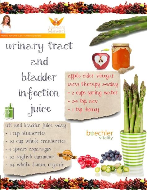 urinary bladders support infection picture 6
