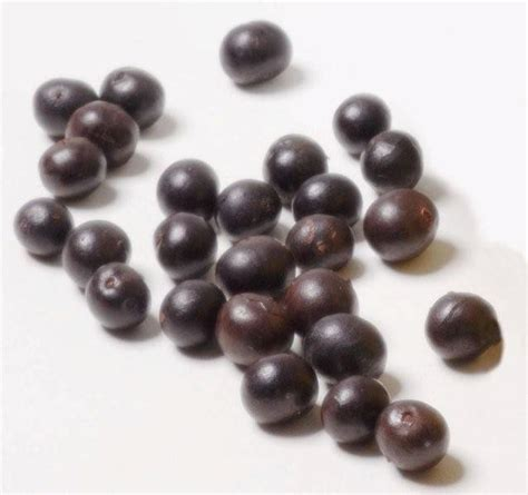 dried acai berries picture 10