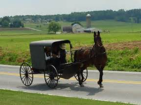 amish herbal stores picture 13