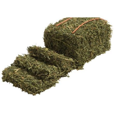 alfalfa bale prices picture 6