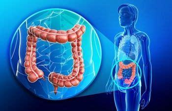 digestive neoplasm nos picture 5