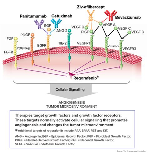 fat metaboliser overdose picture 1