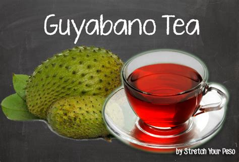 guyabano tea philippines churo picture 9