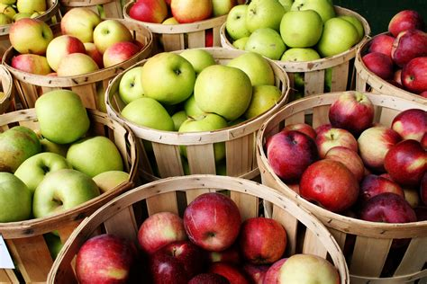 are apples healthy during a diet picture 5