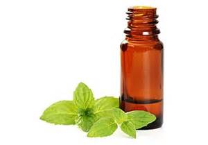 peppermint oil and sex picture 2