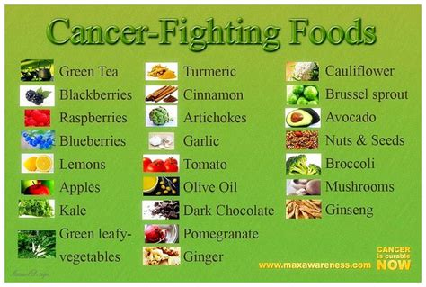 daily diet for cancer patients picture 1