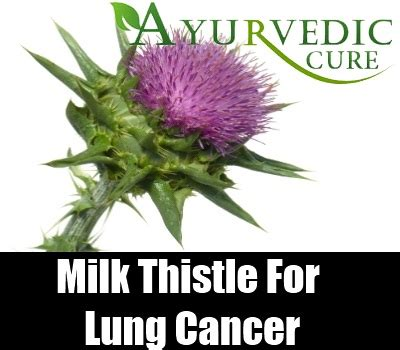 what herb cure fuild in lung picture 12