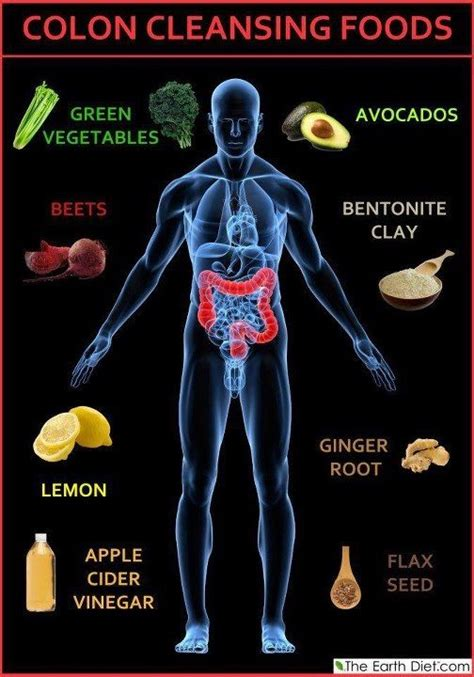colon cleansing diet picture 5
