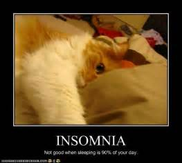 anxiety and chrinic insomnia picture 3