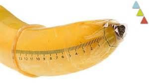 penis congolais picture 1