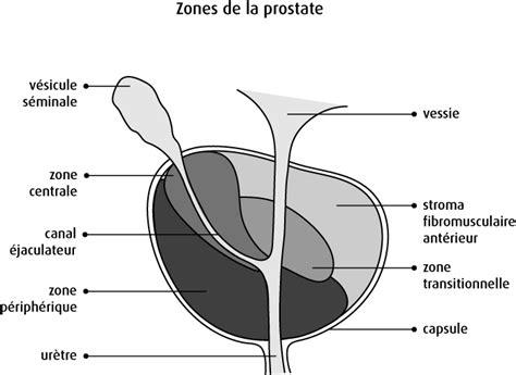 boy penis exam picture 3