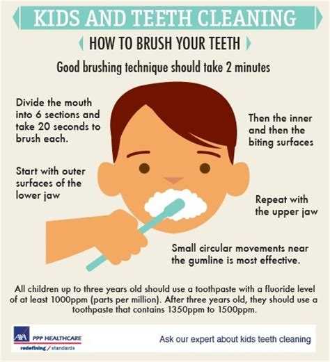 ideas on how long kids should brush teeth picture 5