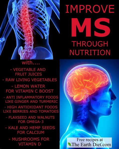 multiple sclerosis and south beach diet picture 6