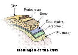 subdural skin irritations picture 2