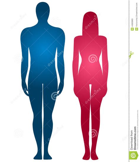 female to male body service picture 6