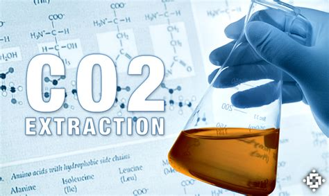 c02 pressure herbal oil extractors picture 17