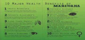 health benefits of dollar weed in florida picture 3