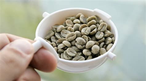 can green coffee bean pills decrease typtophan picture 9