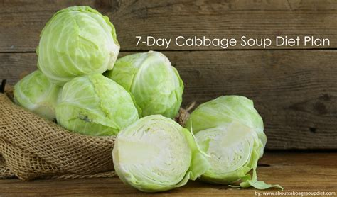 cabbage soup diet recipe picture 6