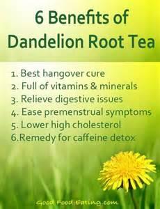 benefits of dandelion tea picture 1