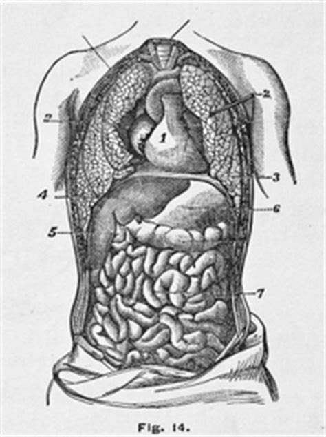 can a cat scan see colon cancer picture 13