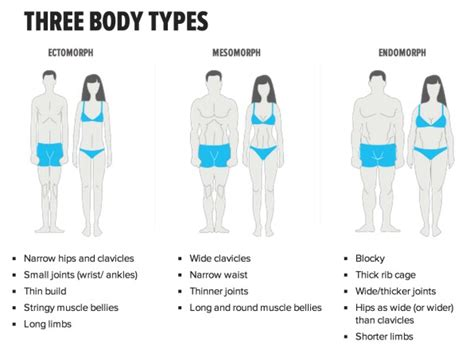 body type and weight loss picture 1
