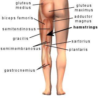 leg pain diet picture 3