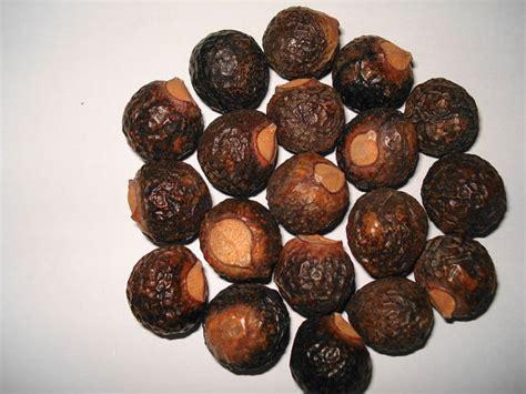 shikakai oil recipe picture 11