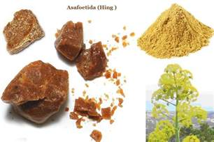hing herbal picture 7