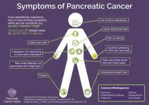 diet for pancrea is in s picture 17